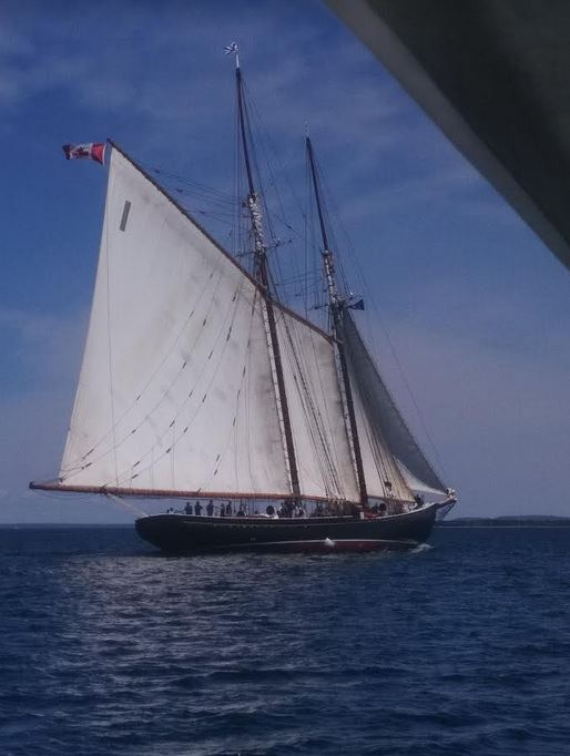 A Chat With Captain Phil Watson – Bluenose II To Do A Pandemic Sail Past; Plans Afoot for Her Centennial Celebrations Next Year