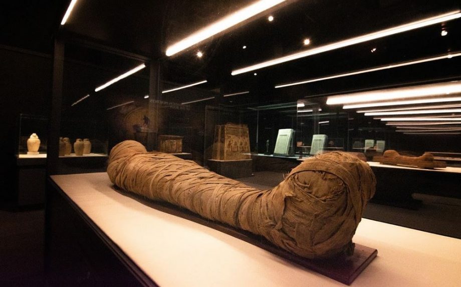 Mummies From Egypt Now An Exhibition Highlight At Halifax's Museum Of Natural History