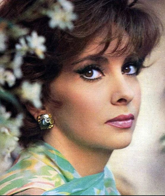 Yarmouth Notes: 'Mr. Yarmouth' Clifford Hood Met Gina Lollobrigida In The 1970s While The Celebrated Actress Was At Irving Pink's Law Office