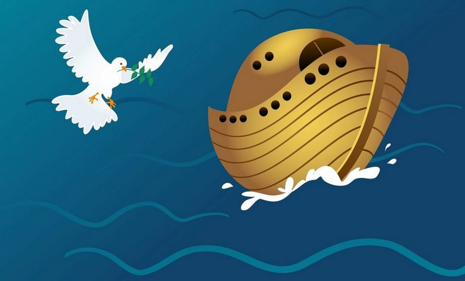 The Developer's Lament: If Noah Had To Build An Ark Today