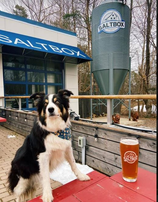 Saltbox Brewing Sizzling On The South Shore
