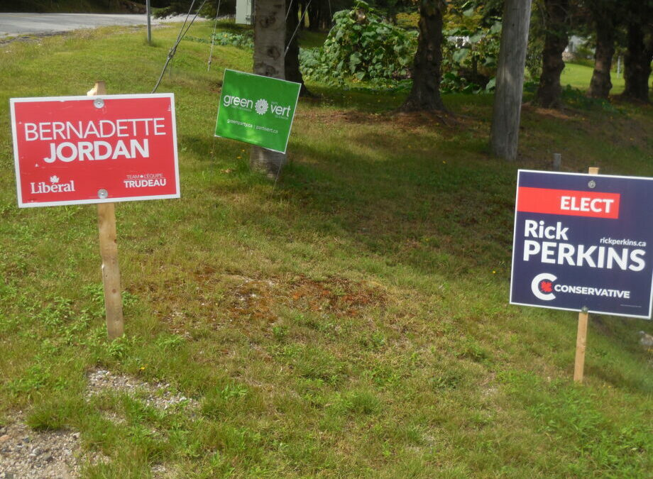 MacPolitics: Just Ask Flora: Election Signs & Buttons Don't Vote- History Lesson On 'Flora Factor'